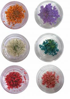 Αποξηραμένα λουλούδια διακοσμητικά νυχιών [40502002]